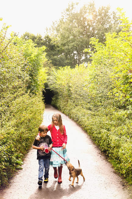 Boy and girl brother and sister walking puppy dog on leash on tree lined park path — Stock Photo