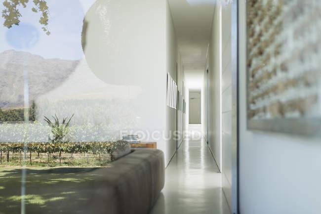 Скляні стіни сучасний будинок з видом на виноградник — стокове фото
