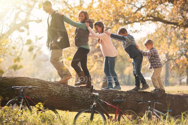Семья, идущая в ряд на упавшем бревне возле велосипедов — стоковое фото
