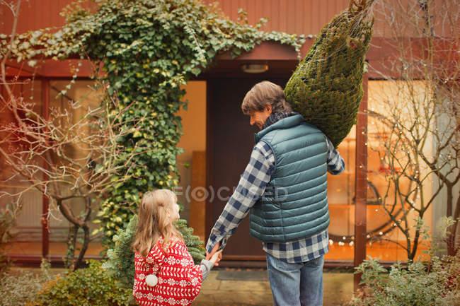 Vater und Tochter tragen Weihnachtsbaum in Richtung Haus — Stockfoto