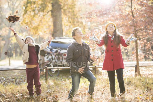 Niños y niñas lanzando hojas de otoño en el bosque - foto de stock