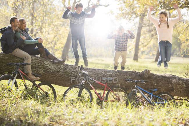 Семья играет на упавшем бревне с велосипедами в лесу — стоковое фото