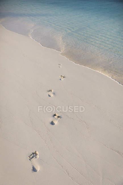 След в песке на тропическом пляже — стоковое фото