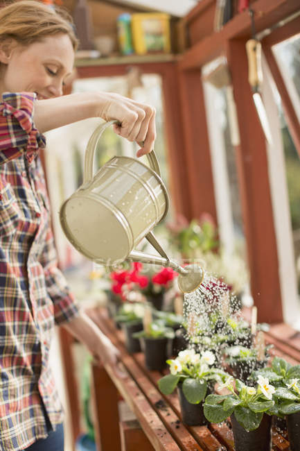 Woman with watering can watering potted plants in greenhouse — Stock Photo