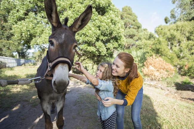 Studente e asino petting insegnante allo zoo — Foto stock