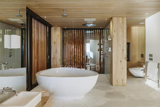 Vasca Da Bagno Moderne : Scatti interni di un bagno moderno in primo piano la vasca da