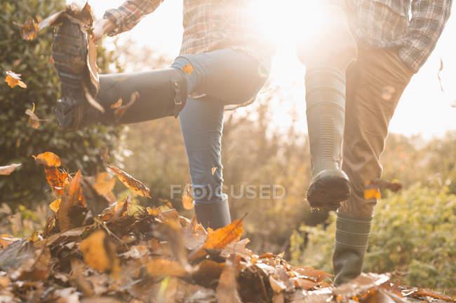 Pareja en botas de lluvia pateando hojas de otoño - foto de stock