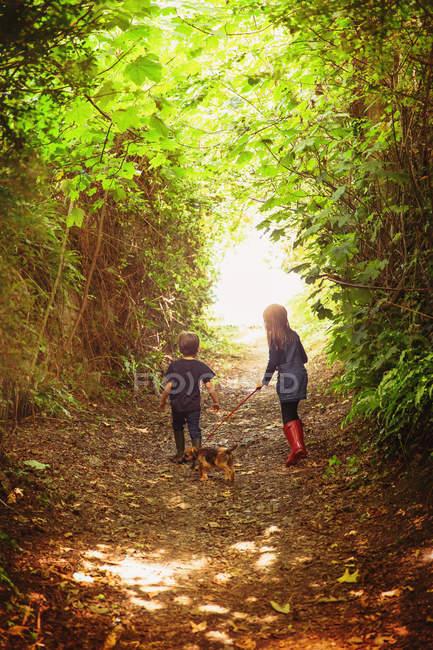 Junge und Mädchen Bruder und Schwester gehen Welpe Hund auf Baum gesäumten Weg — Stockfoto