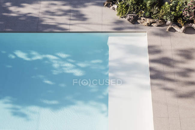 Sunny reflection of tree in blue swimming pool — Stock Photo