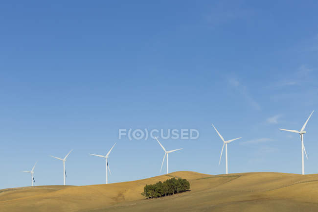 Wind turbines on hilltop during daytime — Stock Photo