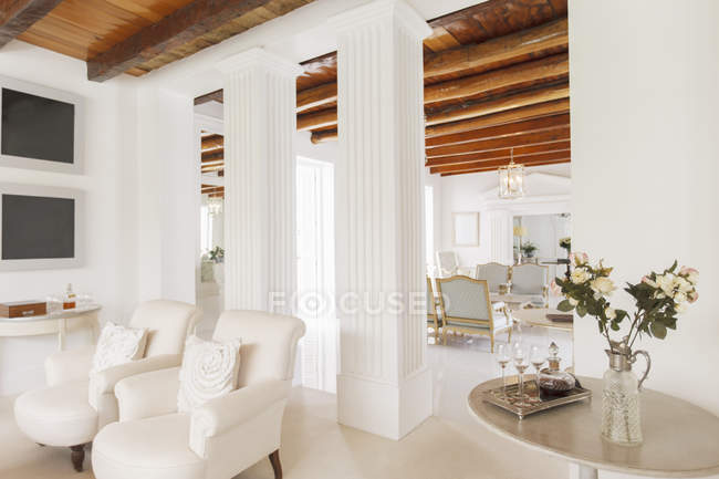 Luxury Living Room With Pillars Color Image Real Estate Stock