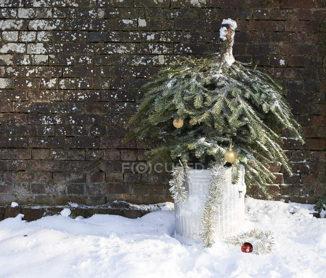 Árvore de Natal em lata de lixo ao ar livre — Fotografia de Stock