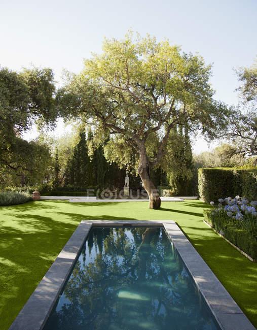 Бассейн в тихом саду — стоковое фото