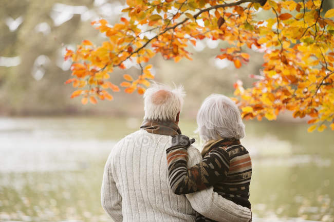 Vista posteriore della coppia più anziana in piedi nel parco — Foto stock