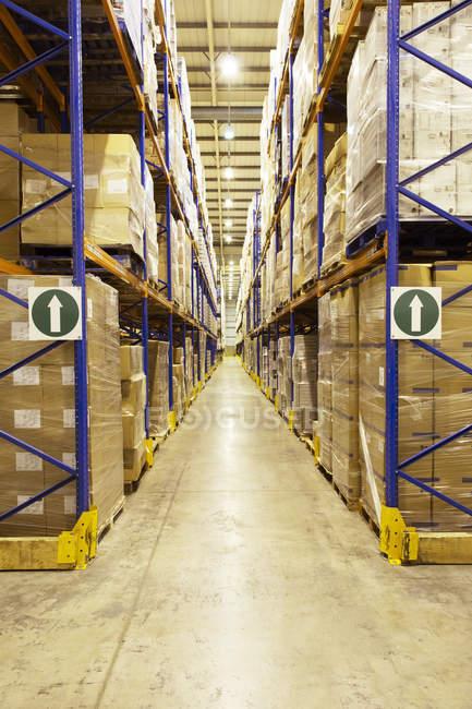 Поддоны коробок на складе — стоковое фото