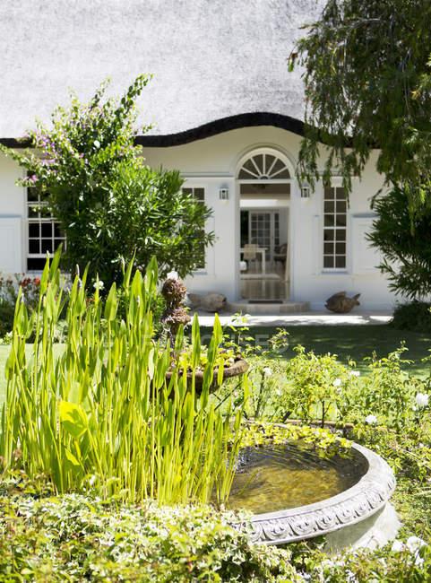 Птичья баня в саду у дома — стоковое фото