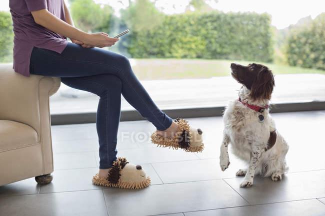 Perro sentado para mujer con teléfono celular - foto de stock