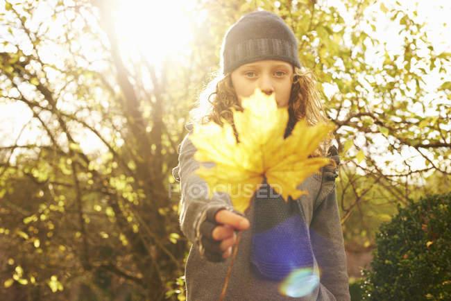 Chica sosteniendo otoño hoja al aire libre - foto de stock