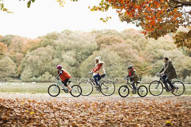 Bicicletas familiares en el parque - foto de stock