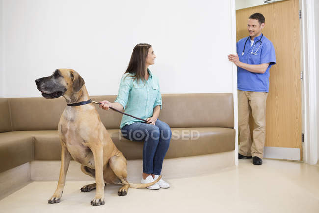 Veterinarian calling owner and dog into veterinary surgery — Stock Photo