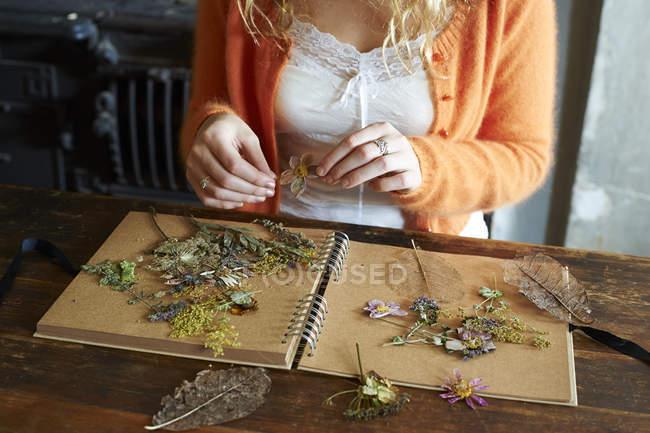 Женщина, устраивая засушенные цветы и травы на ноутбуке — стоковое фото
