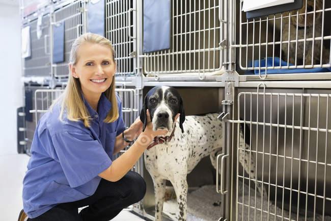 Kaukasischer Tierarzt bringt Hund in Zwinger — Stockfoto