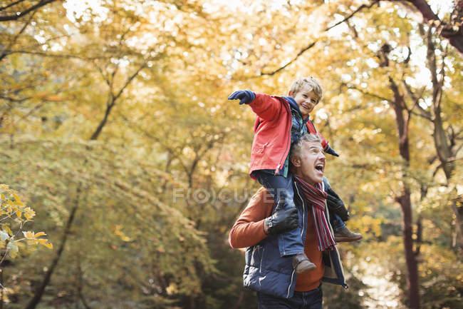 Hombre mayor llevando a su nieto en hombros - foto de stock