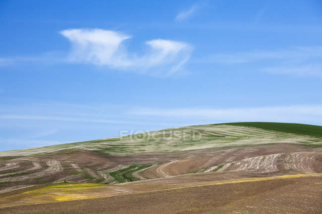 Rolling hills against blue sky during daytime — Stock Photo
