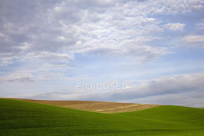 Wolken am blauen Himmel über sanfte Hügel — Stockfoto