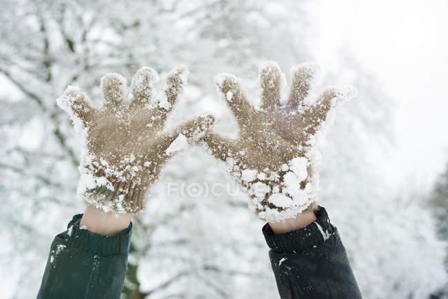 Immagine ritagliata di guanti innevati contro gli alberi — Foto stock
