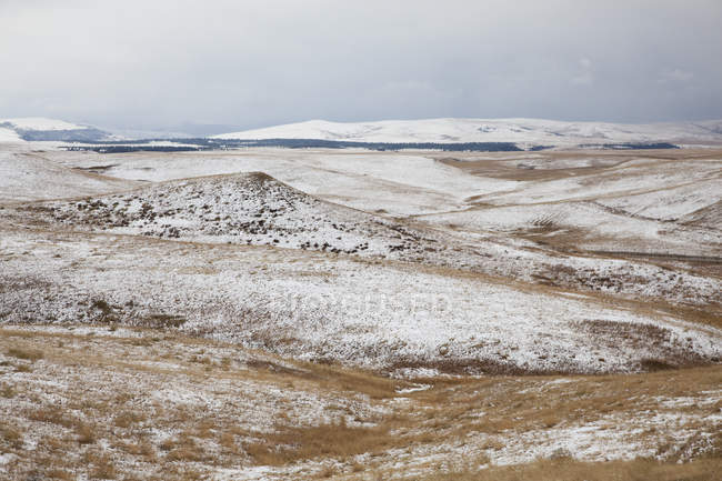Rolling hills in snowy landscape — Stock Photo