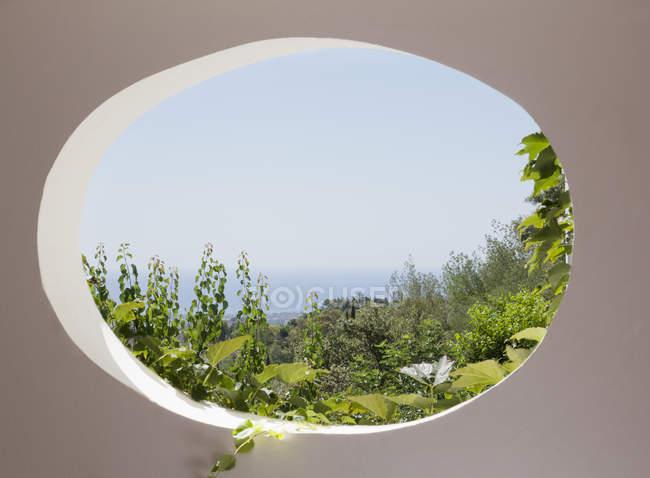 Vista del jardín a través de la ventana oval - foto de stock