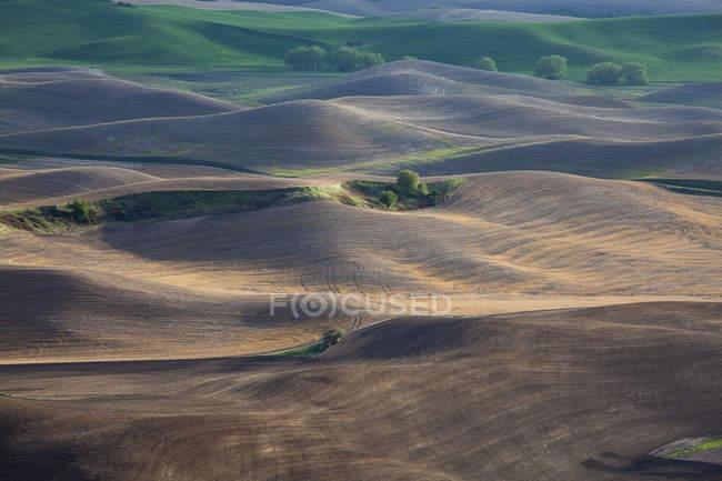 Vue aérienne du paysage vallonné — Photo de stock
