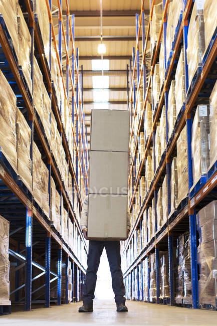 Працівник холдингу коробки в склад — стокове фото