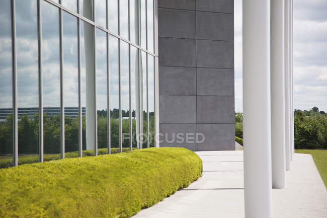 Haies et fenêtres en verre soignées — Photo de stock