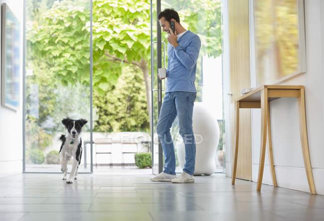 Perro corriendo hombre pasado en la cocina - foto de stock