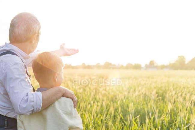 Grand-père agriculteur expliquant la récolte de blé rural à petit-fils — Photo de stock