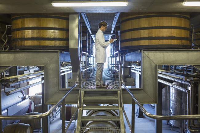Vintner in lab coat on platform in winery cellar — Stock Photo