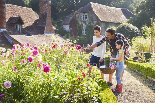 Familia recogiendo flores en jardín soleado - foto de stock