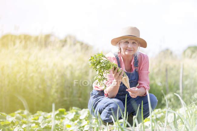 Портрет улыбающейся пожилой женщины, собирающей морковь в солнечном саду — стоковое фото