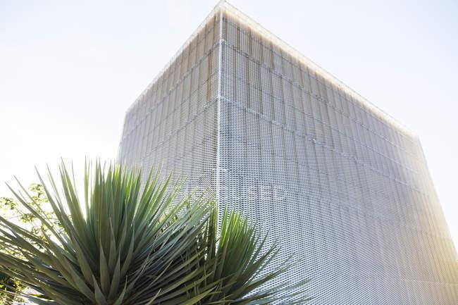 Moderne Gebäude und Baum tagsüber — Stockfoto