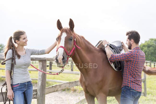 Пара седлающих лошадей на сельском пастбище — стоковое фото