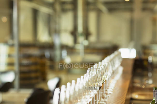 Wine glasses in a row on counter in winery tasting room — Stock Photo