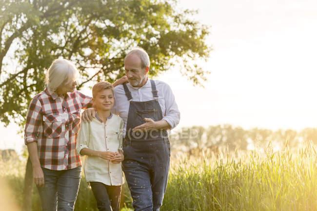 Agriculteurs de grand-mère et petit-fils marchant le long du champ de blé rural — Photo de stock