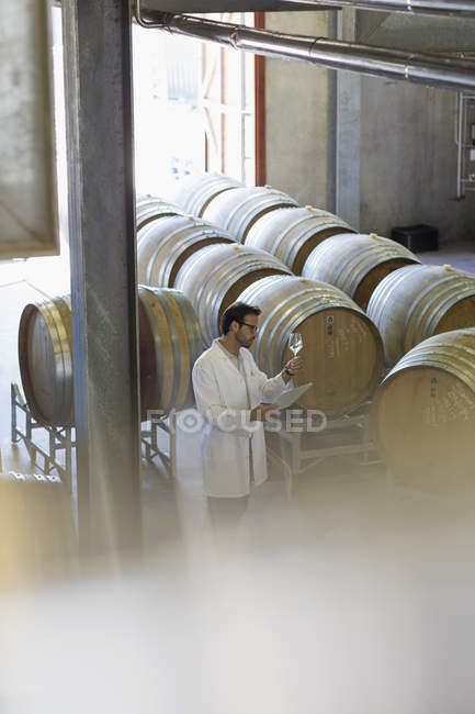 Vintner in lab coat examining white wine in winery cellar — Stock Photo