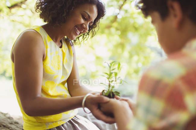 Mãe e filho cupping mudas ao ar livre — Fotografia de Stock