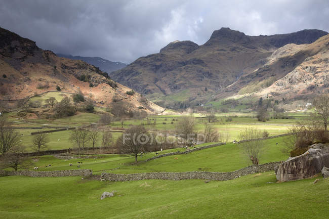 Rocky hills in rural landscape — Stock Photo