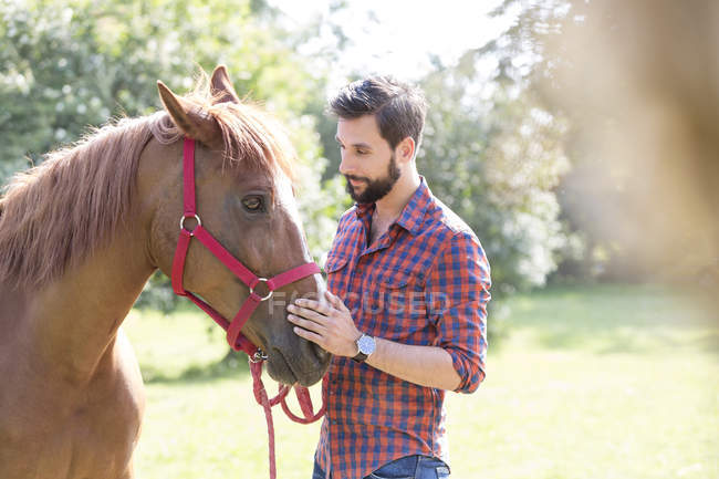 Focinho de cavalo homem acariciando — Fotografia de Stock