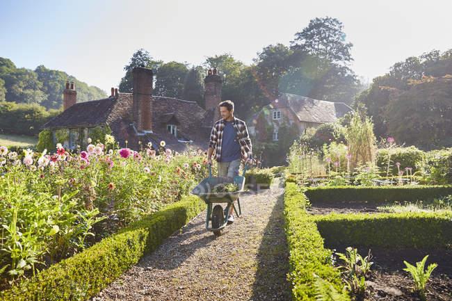 Uomo spingendo carriola nel giardino soleggiato — Foto stock