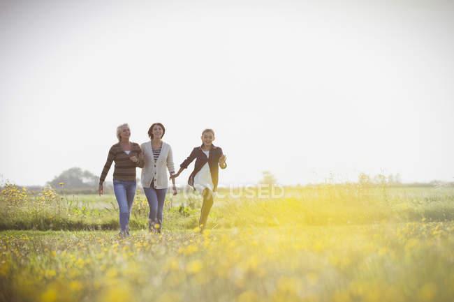 Мульти покоління жінок, що йдуть в сонячний луг — стокове фото